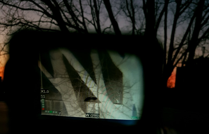Tree captured on thermal imaging camera